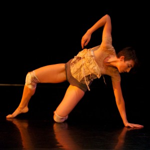 Danceworks Art to Art 2012 065