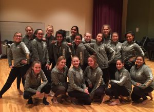 Danceworks Youth Performance Company 2017-18